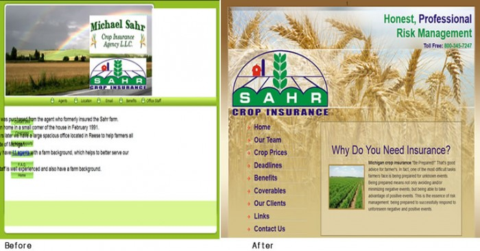 BA-Insurance-web-design-sahr-before